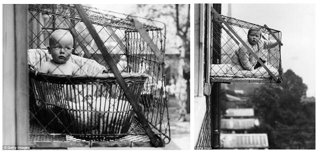 "This set of ""baby cages"" ARE NOT from the book. They are included as a representation."
