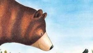 BearAndBird