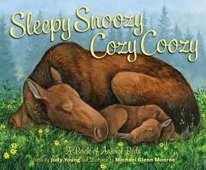 SleepySnoozy